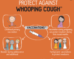 Immunization against whooping cough
