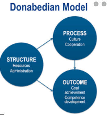 Quality outcome indicator in Donabedian's Theory
