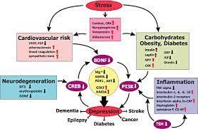 disorders originate from mechanisms