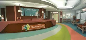 the Shadow Health Resources