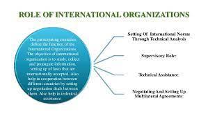 the role intergovernmental organizations